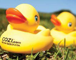 Ducks_LS_small