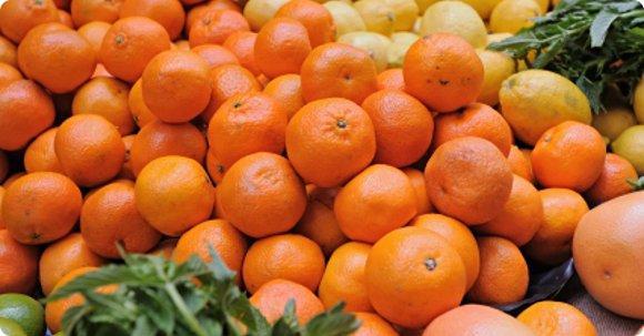 What's In Season Grocery List: Winter