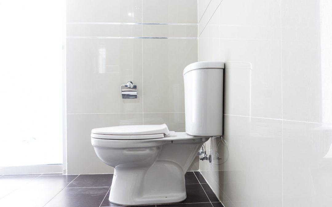 Bathroom Quick Clean Checklist by Clean Mama